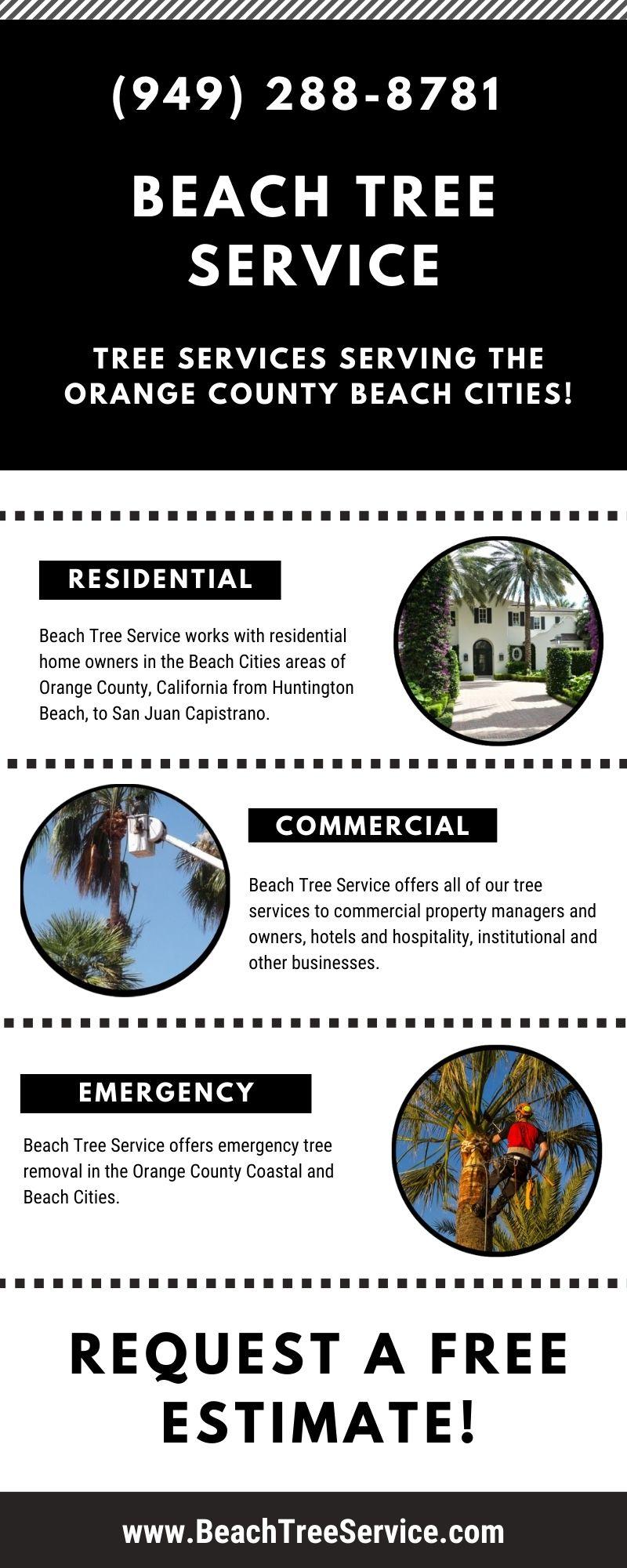 Beach Tree Services Newport Beach California